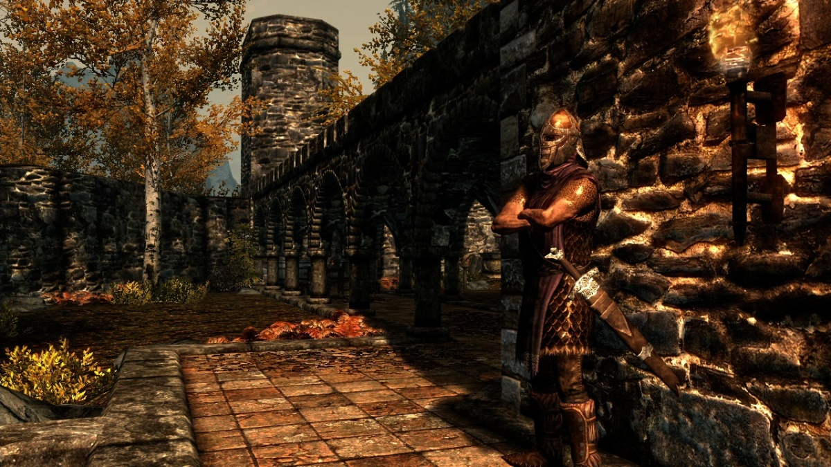 Skyrim Guard