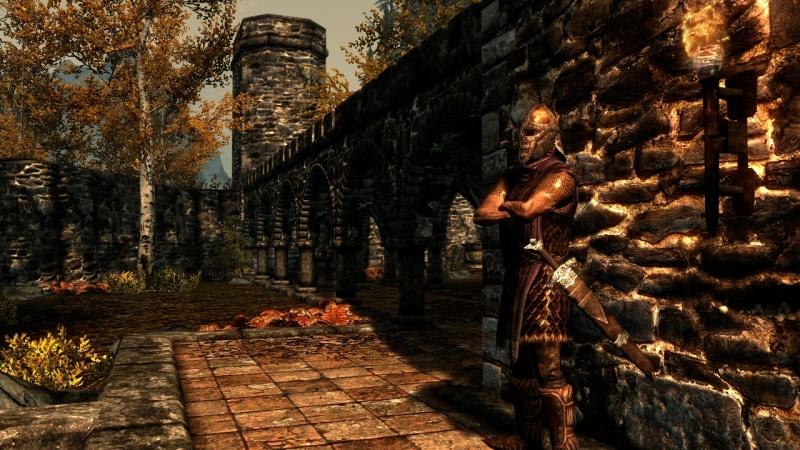 Skyrim Guard