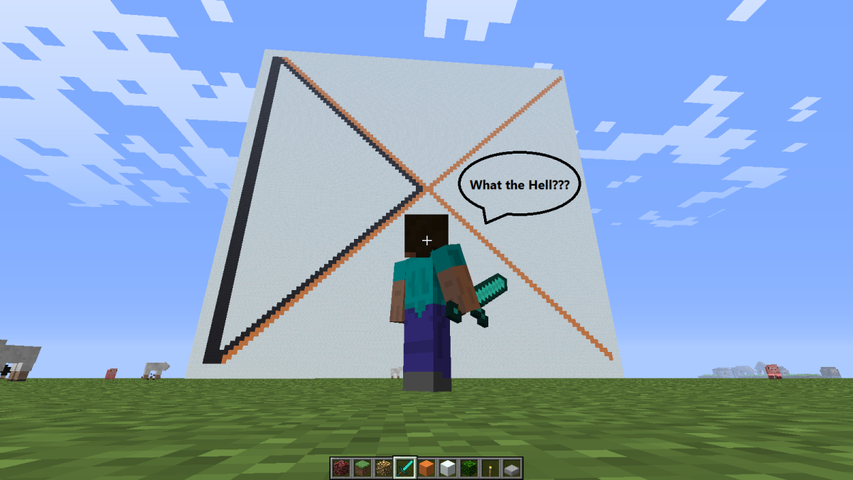 Minecraft What The Hell